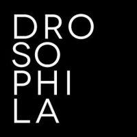 logo_dspl